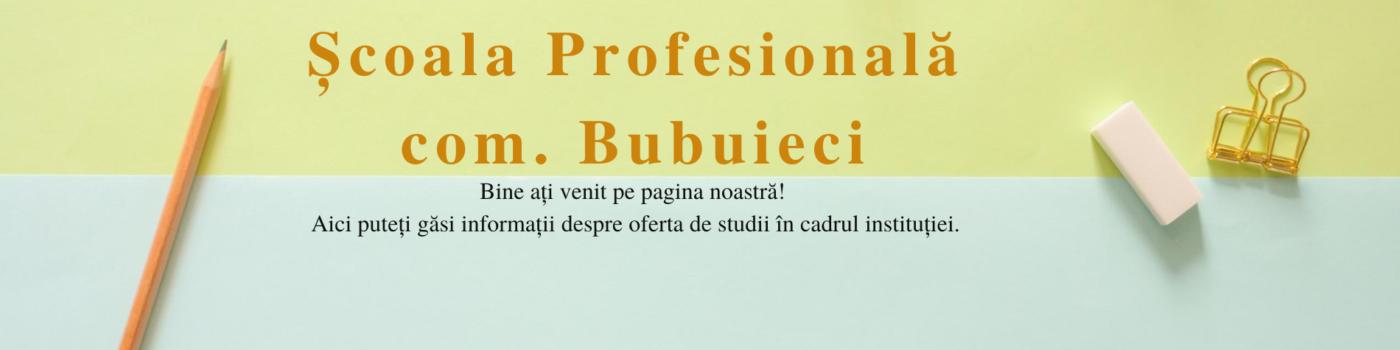 Scoala Profesionala Bubuieci